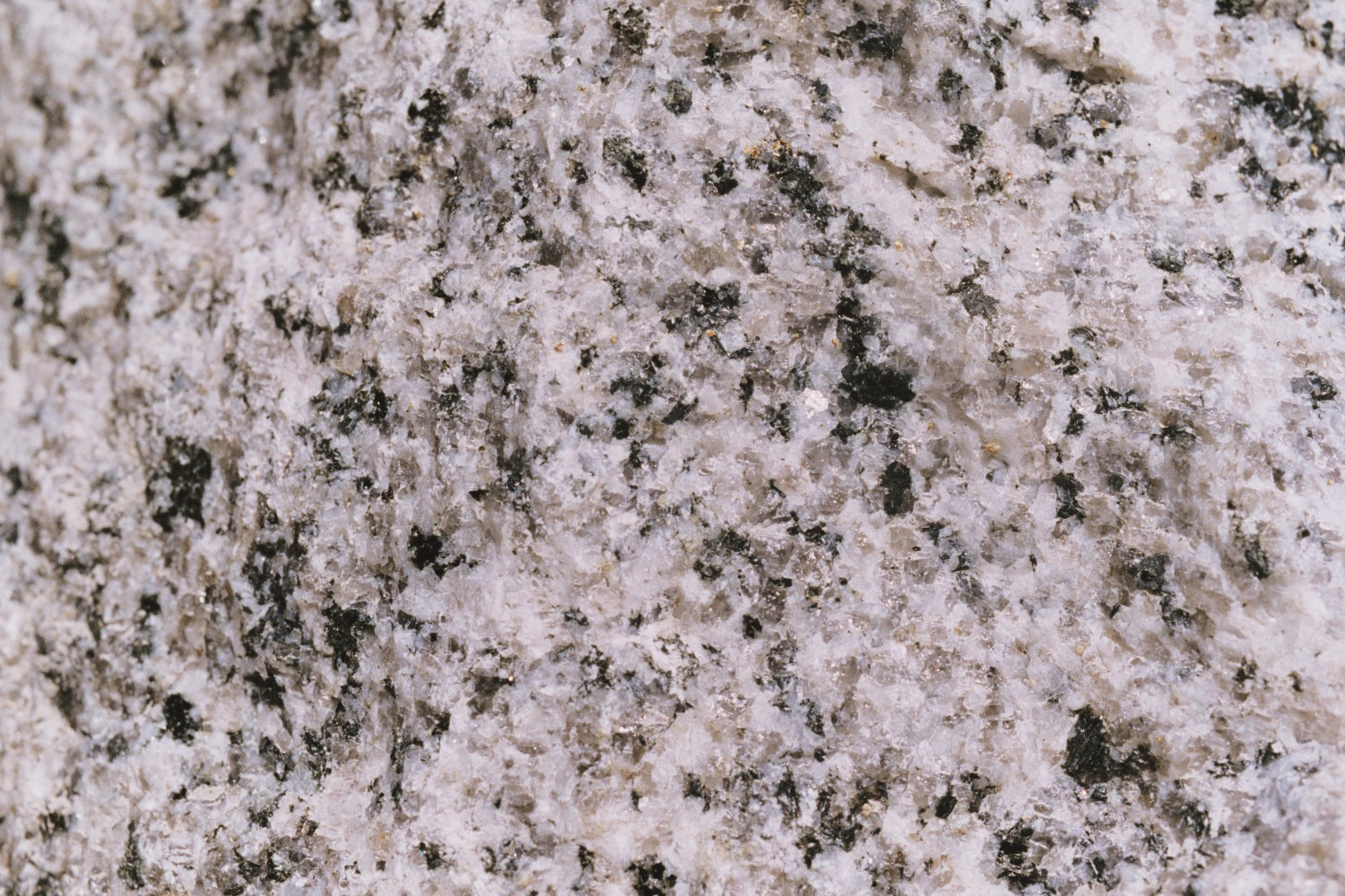 Granite Igneous Rock : Igneous rock
